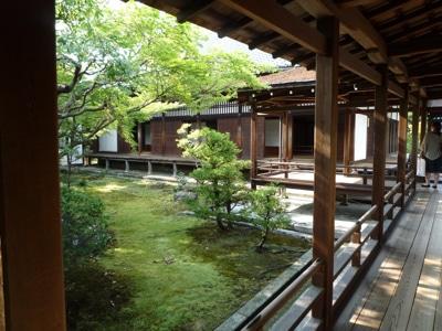 Shingon Reiki Level 1 Lotus