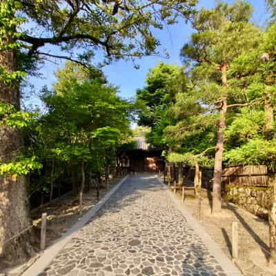 Shingon Reiki - der Weg des Herzens